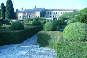 Villa-La-Foce,-il-primo-giardino-corpo