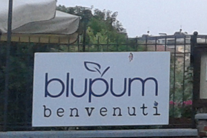 blupum-2-corpo