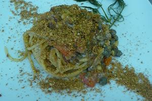 Spaghetto ruvido al bronzo ammuddicato