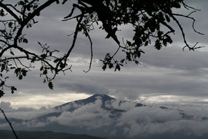Monte-Amiata-corpo