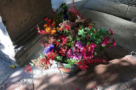 fiori-web