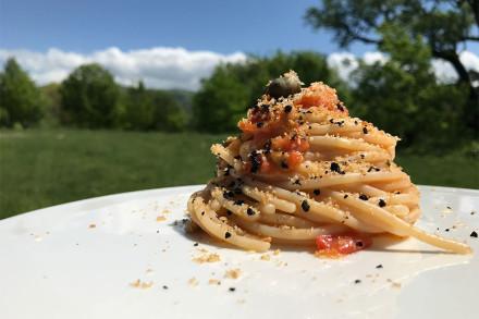 spaghetti-1-web