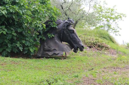 cavallo-web